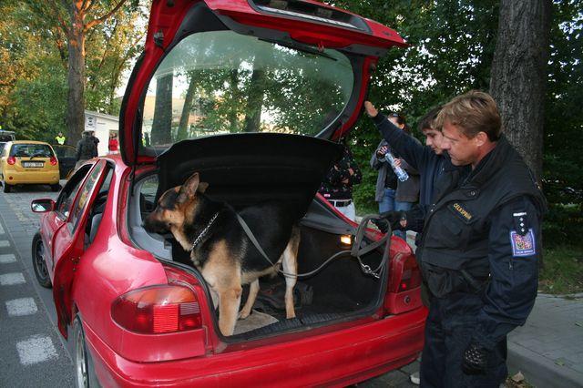 Pes celní správy objevil i extázi v autě