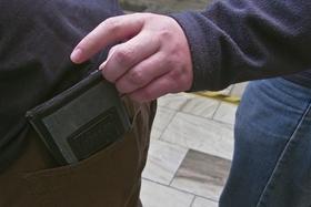 kapesní krádeže - kapsa